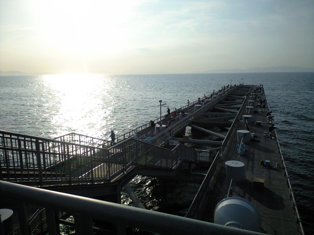美しい夕方の海。みんなのんびり釣ってます